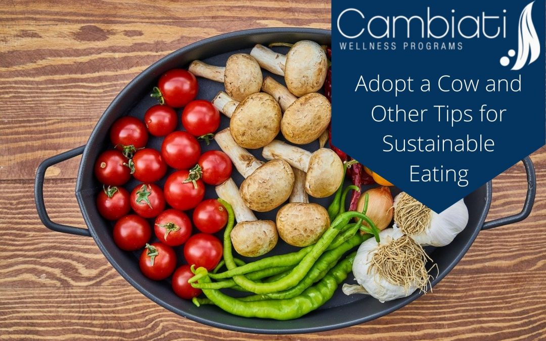 Adopt a Cow and Other Tips for Sustainable Eating