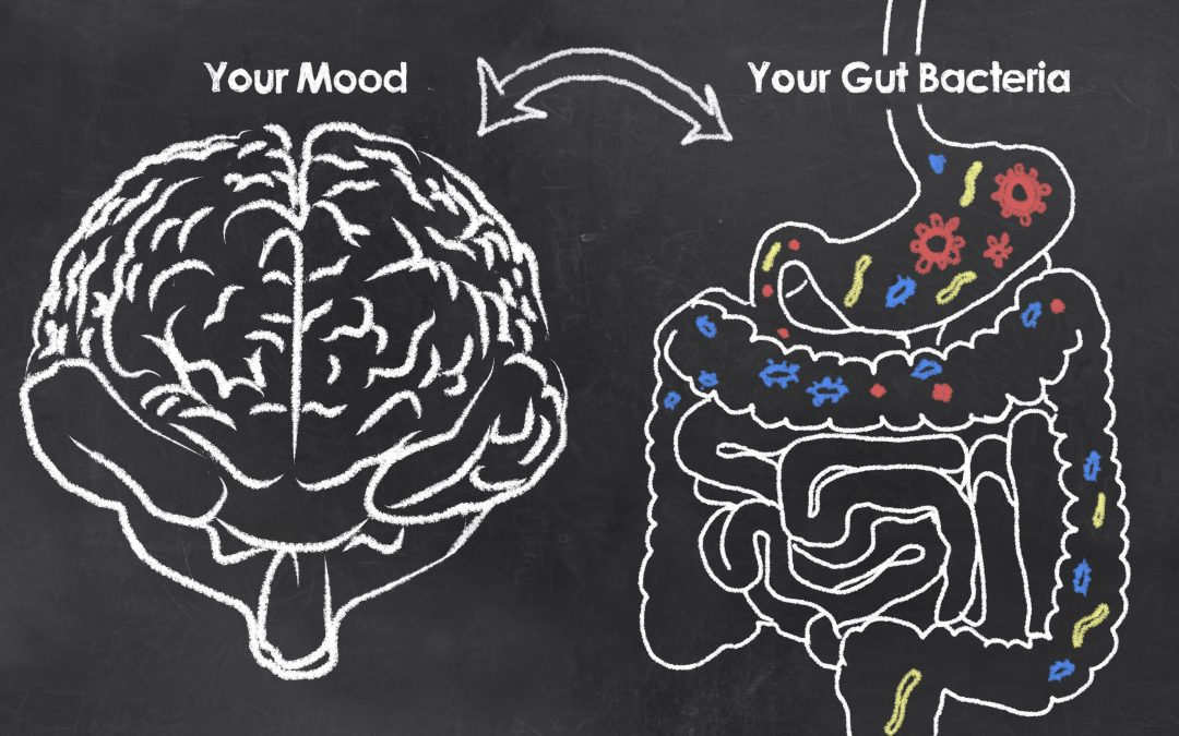 How Stress Affects Digestion