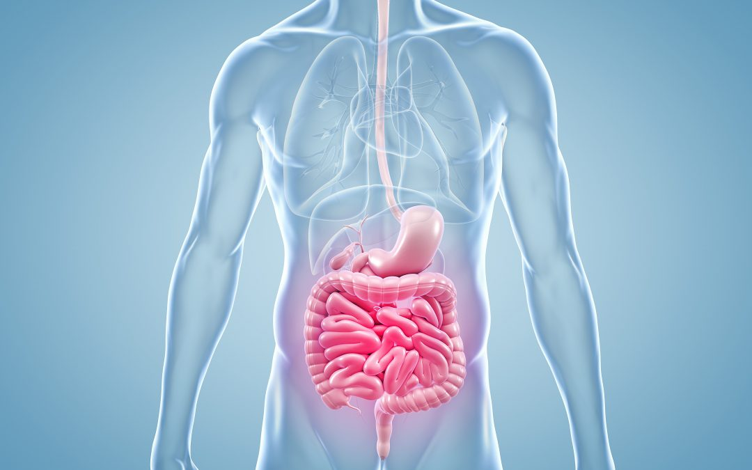 What is Gut Microbiome Testing